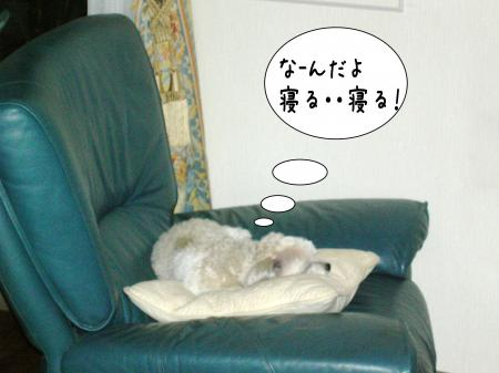霆・_convert_20101118125209