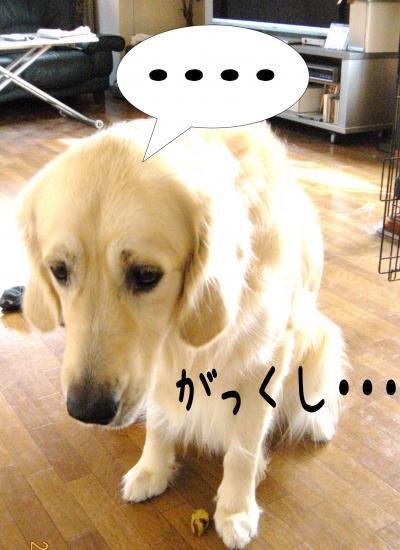 霆・_convert_20101118125049