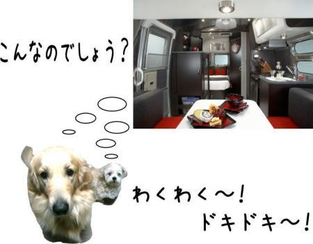霆・_convert_20101118125005