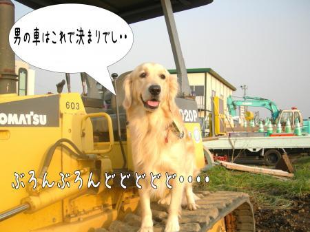 霆・_convert_20101118124924