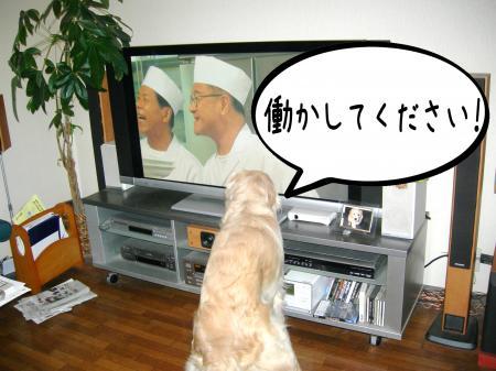 霆・_convert_20101118125541