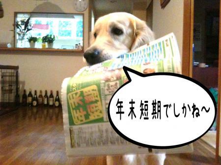 霆・_convert_20101118125459