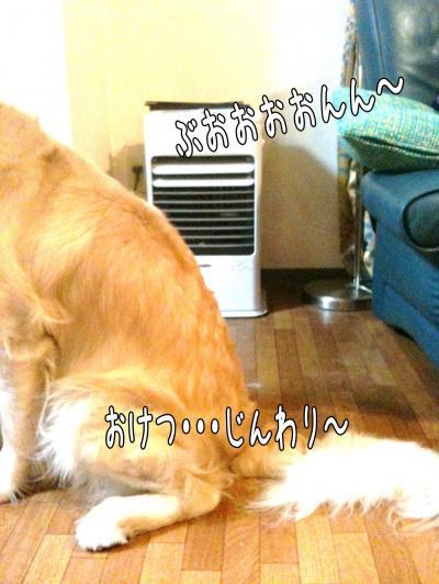 縺セ縺ヲ6_convert_20101203090405