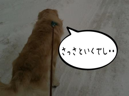 縺セ縺ヲ4_convert_20101203090245