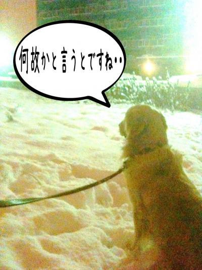 縺セ縺ヲ2_convert_20101203090115