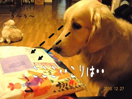 繝励Ξ繧シ繝ウ繝・_convert_20101227221430