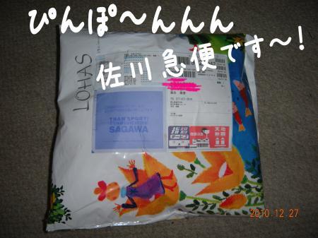 繝励Ξ繧シ繝ウ繝・_convert_20101227221325