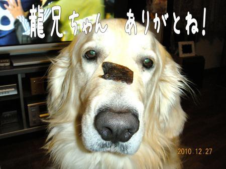 繝励Ξ繧シ繝ウ繝・_convert_20101227221634