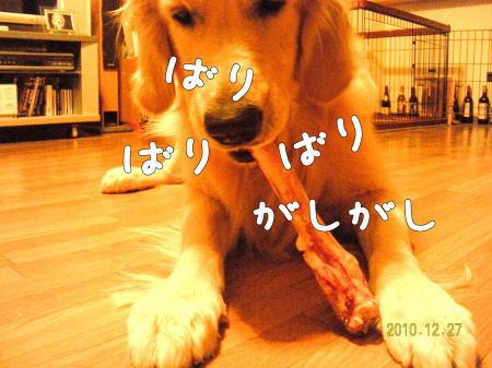 繝励Ξ繧シ繝ウ繝・_convert_20101227221605