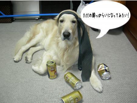譁ー蟷エ6_convert_20110101001737