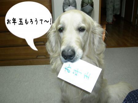 譁ー蟷エ5_convert_20110101001706