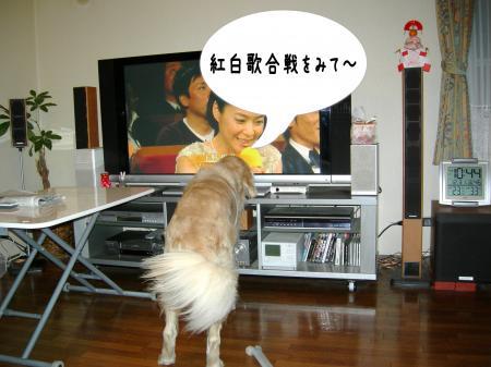 譁ー蟷エ4_convert_20110101001633