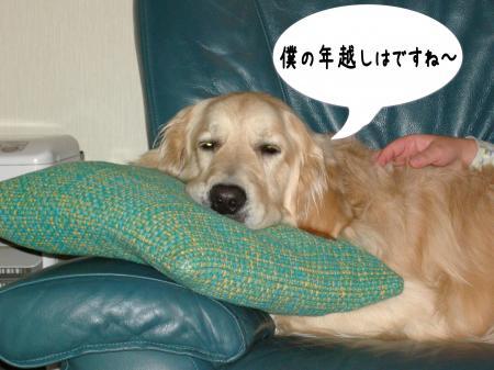 譁ー蟷エ1_convert_20110101001453