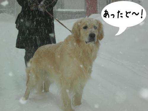 繝ュ・阪た繝ウ2_convert_20110109153334