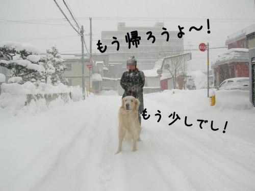 繝ュ・阪た繝ウ1_convert_20110109153305