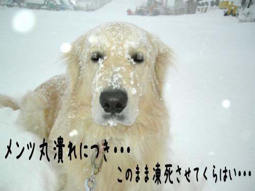 繝ュ・阪た繝ウ8_convert_20110109153649