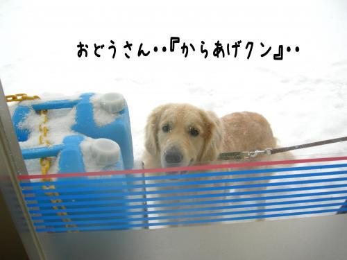 繝ュ・阪た繝ウ_convert_20110109155122