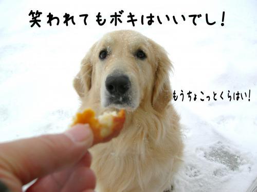 繝ュ・阪た繝ウ9_convert_20110109161224