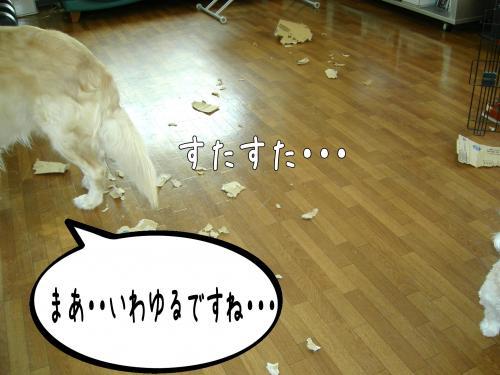 繝?繝ウ繝懶シ阪Ν6_convert_20110126224127