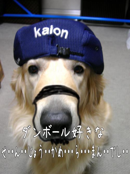 繝?繝ウ繝懶シ阪Ν5_convert_20110126224102