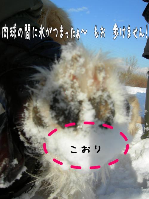 縺。縺ゅ″9_convert_20110129125348