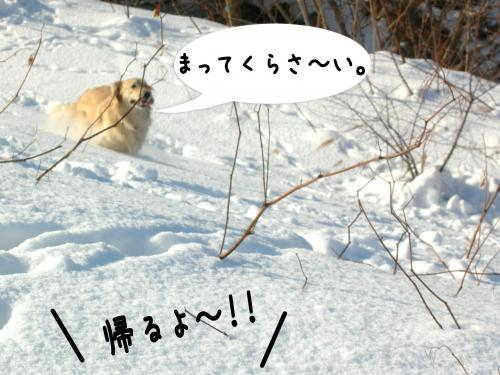 縺。縺ゅ″5_convert_20110129125138