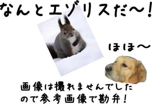 縺。縺ゅ″4_convert_20110129125108