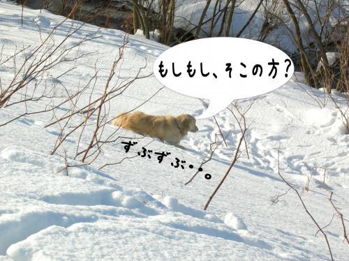 縺。縺ゅ″・胆convert_20110129125001