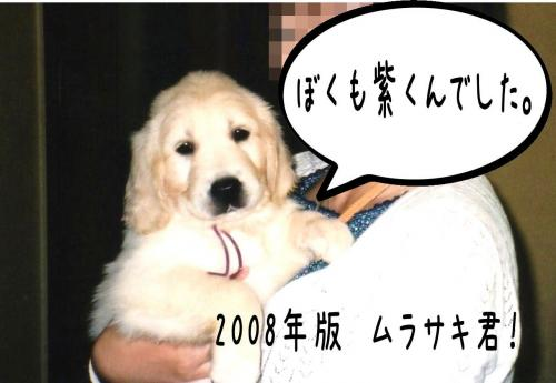 繝�繝ゥ繧オ繧ュ1_convert_20110131101558