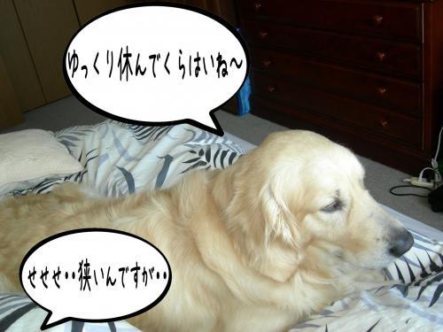 繝�繧ヲ繝ウ6_convert_20110208092823