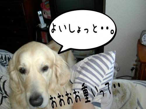 繝�繧ヲ繝ウ4_convert_20110208092708