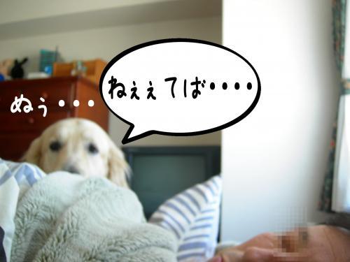 繝�繧ヲ繝ウ3_convert_20110208092633