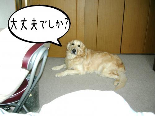 繝�繧ヲ繝ウ1_convert_20110208092454