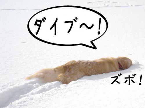 蟶ー繧峨↑縺・_convert_20110221131536