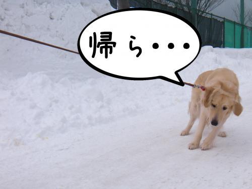 蟶ー繧峨↑縺・_convert_20110221125738