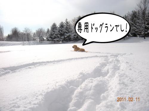 蟶ー繧峨↑縺・_convert_20110221131724