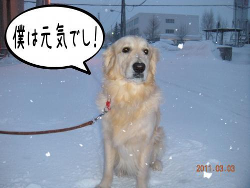 譯・_convert_20110303144644