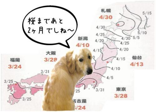 譯・_convert_20110303144336