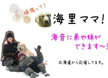 kairi_convert_20110107095902.jpg