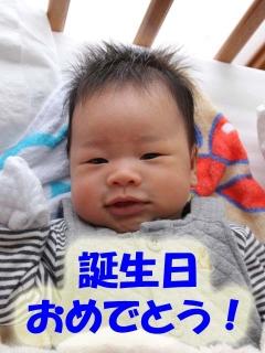 s-kaisei22.jpg