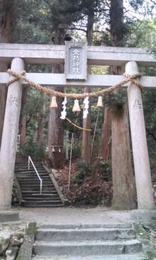 ハーリー開運上昇ブログ!-091128_1517~01.jpg