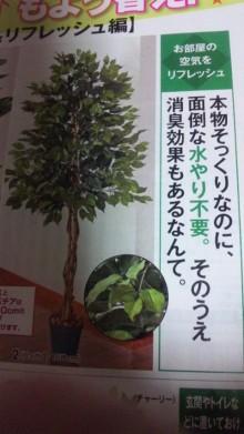 ハーリー開運上昇ブログ-101103_0402~01.jpg