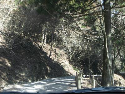 天城隧道に至る道