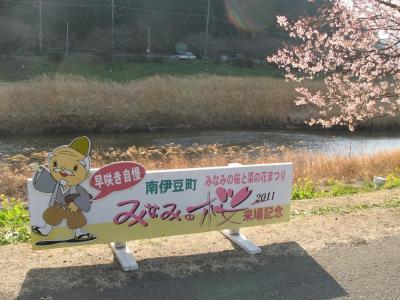 桜と菜の花まつり