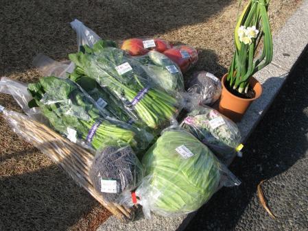 野菜と水仙