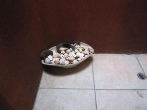 トイレの貝殻