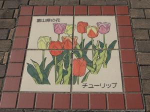 富山県チューリップ