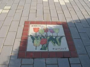 新潟県チューリップ