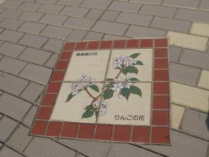青森県りんごの花