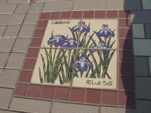 三重県 花しょうぶ